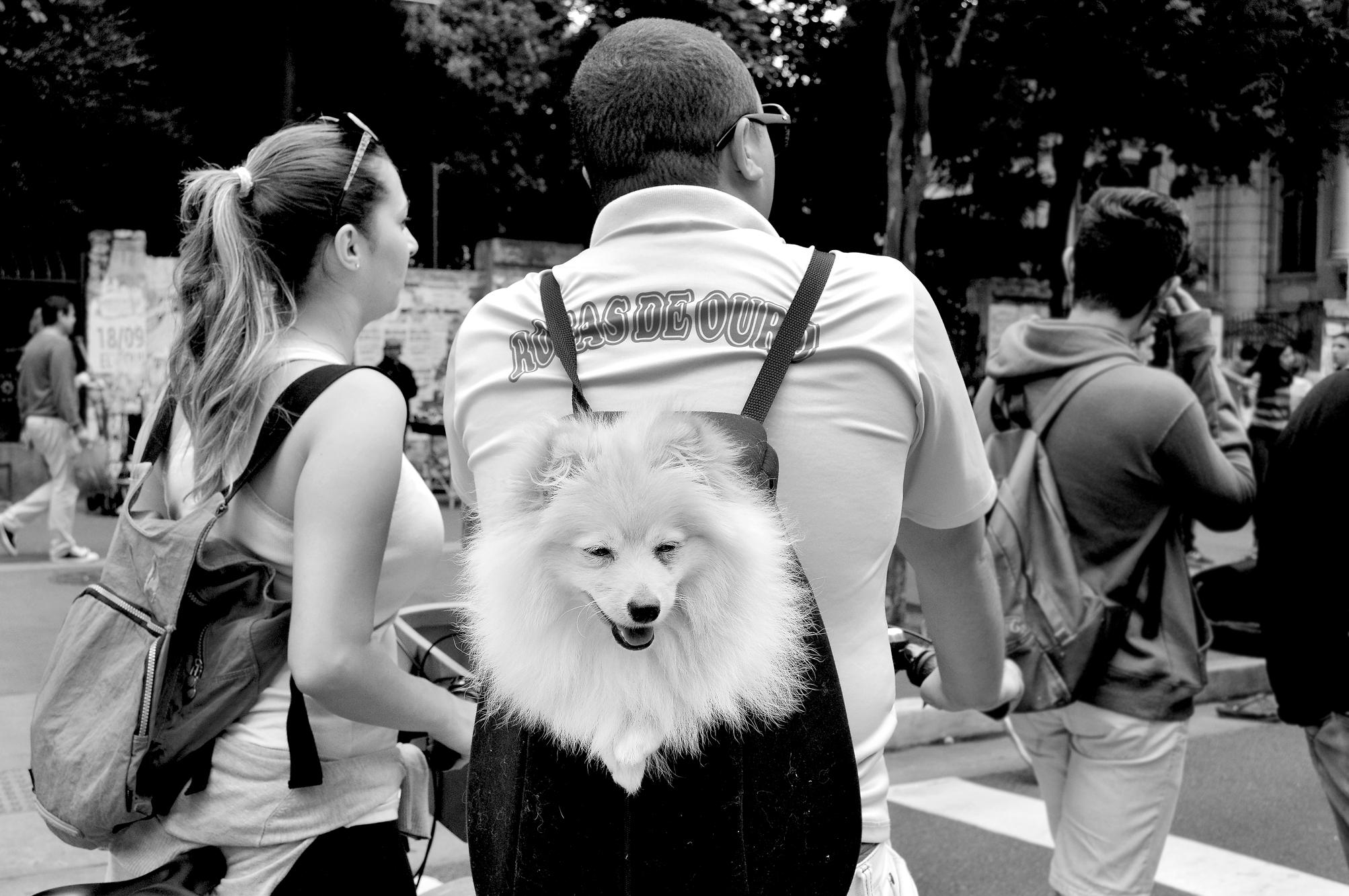STREET PHOTO - SÃO PAULO - ITACI BATISTA